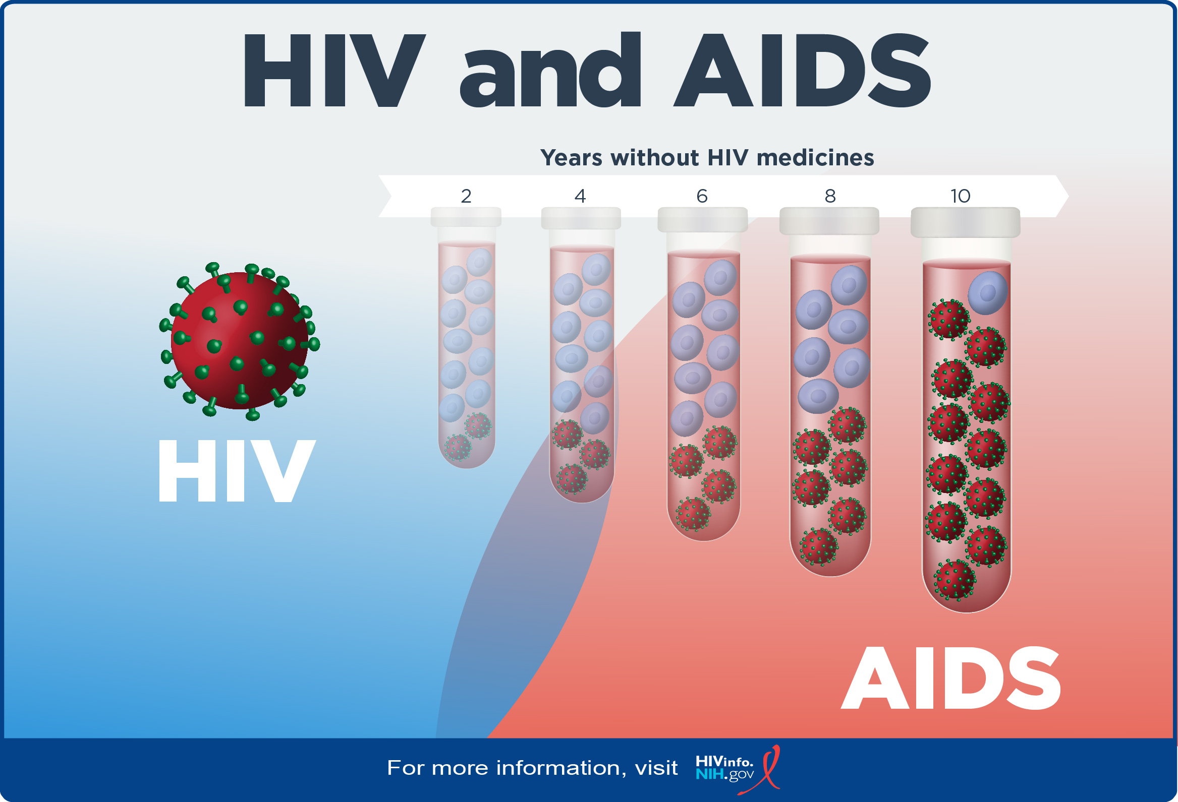 HIV versus AIDS: Years without HIV medicines. Graphic of HIV progression: before infection, acute HIV infection, chronic HIV infection, and AIDS.